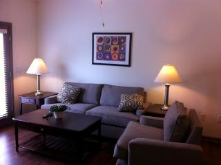 Awesome 1 BD near Hyde Park(OKS-1BR) - Cincinnati vacation rentals