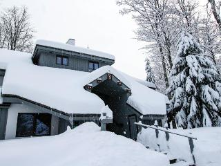 Go ski, get a massage, relax in the sauna, all in one place! - Killington vacation rentals