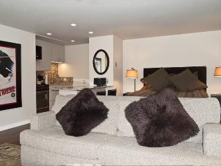 Atelier #1078 - Sun Valley - Adorable Remodeled Studio - Sun Valley vacation rentals