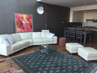 Luminous Loft , large 1 bdr Downtown - Dubai vacation rentals