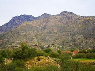 Elegantly appointed, fully furnished condo with stunning mountain views - Tucson vacation rentals