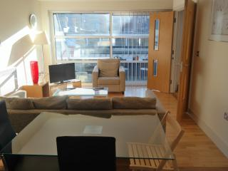 One Bedroom Apartment Farringdon London City - London vacation rentals