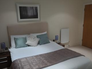 One Bedroom Apartment #521 canary wharf - London vacation rentals