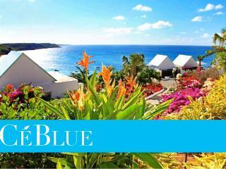Nice Villa with Deck and Internet Access - Anguilla vacation rentals
