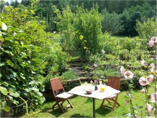Nice Gite with Internet Access and Microwave - Lapoutroie vacation rentals