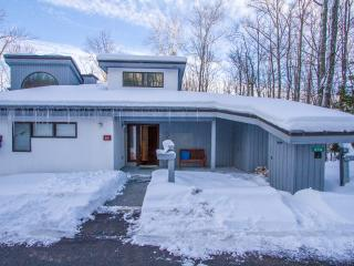 The Woods At Killington Resort - E3 Townhome - Killington vacation rentals