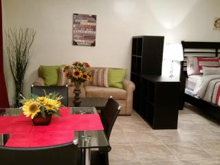 Studio 20 min from Times Squares-Manhattan , NY - Bronx vacation rentals