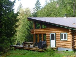Cabin #97 - Log Cabin at the Lake that is Pet-Friendly! - Maple Falls vacation rentals