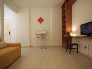★Riachuelo 408 A★ - Rio de Janeiro vacation rentals