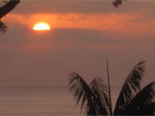 Ivory Coast  .  .  .Ocean View &  Beach Access - Dana Point vacation rentals
