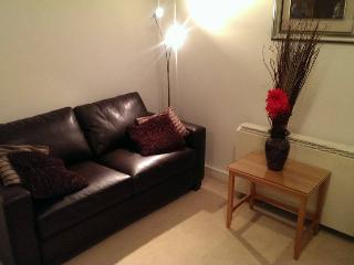 Dublin City Centre -Temple Bar- 1 Bed Apartment - Dublin vacation rentals