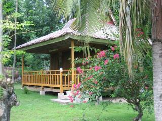 Honeymoon cottage in Orchid Park - Consolacion vacation rentals