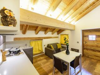 Nice Townhouse with Internet Access and Central Heating - Alagna Valsesia vacation rentals