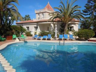 Costa Blanca South, 3 X 4 Bed Detached Villa's - Torrevieja vacation rentals