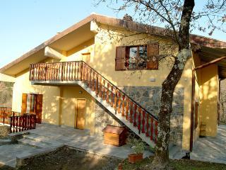 Appartamento Chez Gaston - Arezzo vacation rentals