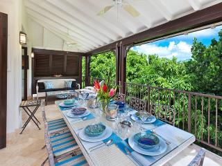 Tree House Villa - Saint James vacation rentals