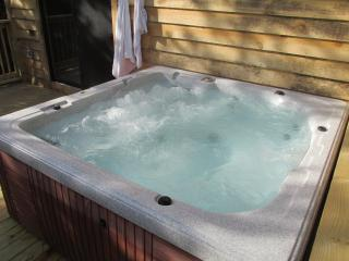 Your Secluded Cabin With Supersized Hot Tub! - London vacation rentals