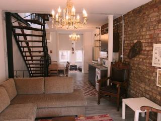 Galatapera#1 newly renovated is a  historical home - Istanbul vacation rentals