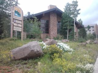 Cedar Breaks Lodge Studio Condo sleeps 4 - Brian Head vacation rentals