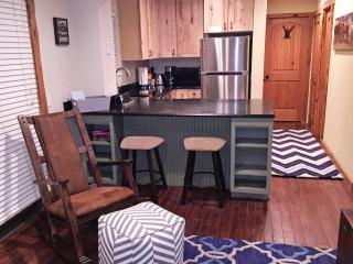 Gorgeous Condo Next To Bus Stop - Vail vacation rentals