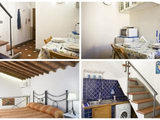Max San Zanobi  in Florence Heart of City Centre - Florence vacation rentals