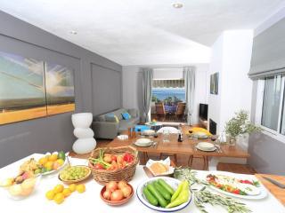 Gerakina Skala - Beach House II - Gerakini vacation rentals