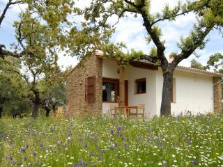 1 bedroom Bungalow with Internet Access in Province of Caceres - Province of Caceres vacation rentals