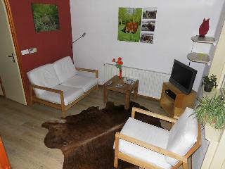Romantic 1 bedroom Leeuwarden Apartment with Internet Access - Leeuwarden vacation rentals
