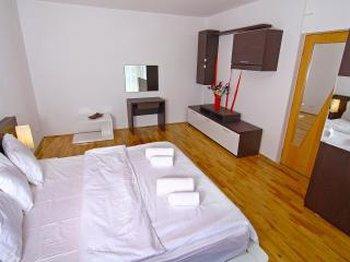 VIP Duplex Apartment with Sauna and Backyard - Snagov vacation rentals