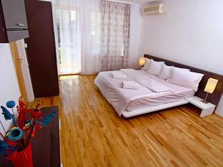 VIP Duplex Apartment with Sauna and Backyard - Bucharest vacation rentals