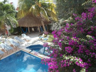 2 level-pool, fountain, garden - no booking fee - Cozumel vacation rentals