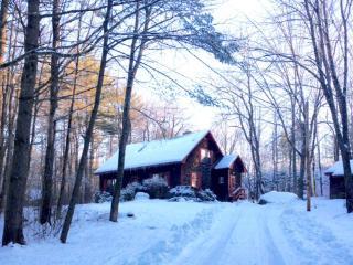 Bethlehem/White Mountain Modern Retreat - Bethlehem vacation rentals