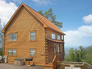 HAKUNA MATATA - Tennessee vacation rentals