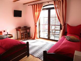 Double room with balcony on Transfagarasan - Cartisoara vacation rentals