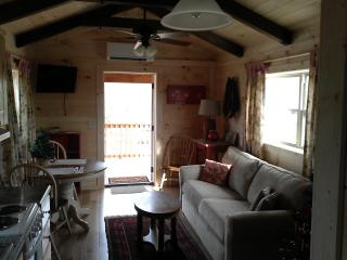 Romantic 1 bedroom Tryon Cabin with Internet Access - Tryon vacation rentals
