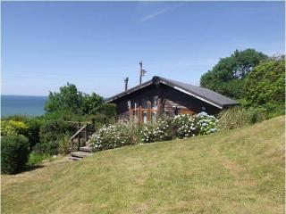 Lovely Chalet with Deck and Internet Access - Nefyn vacation rentals