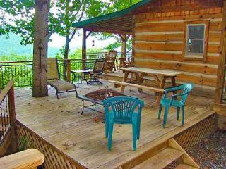 Bear Hug Cabin - Cozy 1 Bedroom 4 Miles from Town with Hot Tub and Mountain View - Bryson City vacation rentals