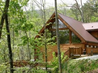 White Tail Hollow - Spacious, Romantic, and Comfortable. Wi-Fi and Outdoor Hot Tub. Rafting and Fontana Lake are Minutes Away. - Bryson City vacation rentals