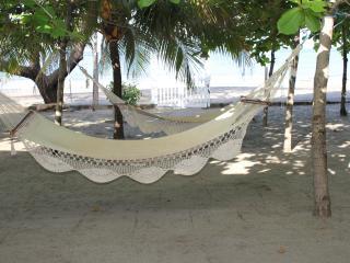 Casa Iguana Azul - Casares vacation rentals