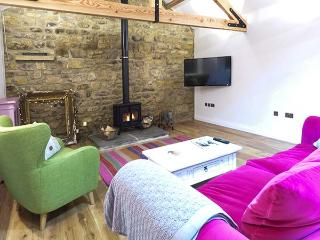 THE COWSHED luxury single-storey barn conversion, character features, en-suite, woodburner, in Horsley near Corbridge, Ref 30884 - Wylam vacation rentals