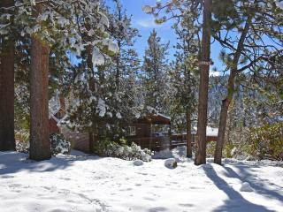 Gorgeous cabin: close to everything, WiFi, dogs ok - Big Bear Lake vacation rentals