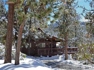 Authentic cabin: Lake nearby, WiFi, mountain views - Big Bear Lake vacation rentals