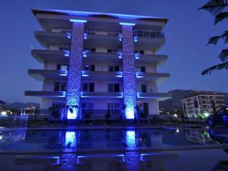 Cozy 2 bedroom Kestel Apartment with Internet Access - Kestel vacation rentals