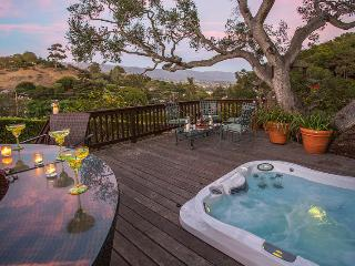 Bienvenue - Santa Barbara vacation rentals