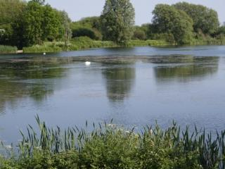 Lakeview, Lakeside lodge, close to Chichester - Chichester vacation rentals