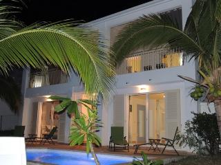 BEAUTIFUL VILLA ON THE HEIGHTS OF MONT CHOISY - Grand Case vacation rentals