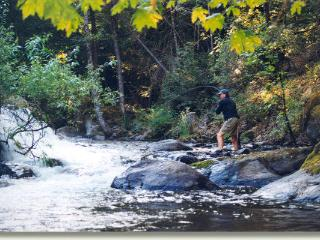 Bailey Creek Lodge-Waterfront-2 lakes-2 creeks - Manton vacation rentals