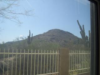 Mountain View 3 bedroom House in Ahwatukee! - Arizona vacation rentals