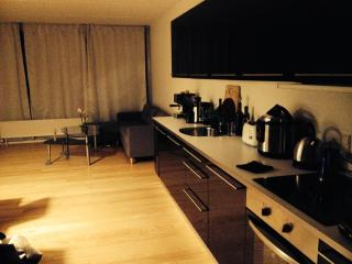Hi i this amply apartment and relax area - Kokkedal vacation rentals
