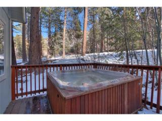 Heavenly Cabin ~ RA622 - South Lake Tahoe vacation rentals
